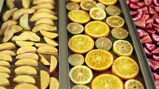 دما و زمان خشک شدن میوه