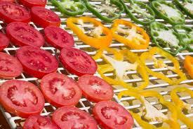 Photo of خشک کن گوجه فرنگی و کاربرد گوجه فرنگی خشک شده