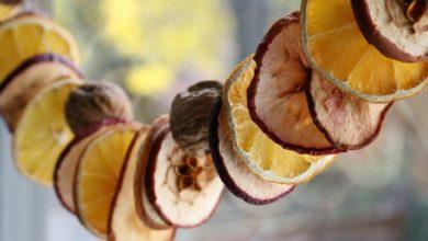 Photo of روش بالابردن سرعت خشک میوه و سبزی