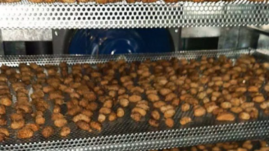 Photo of فروش خشک کن میوه در مشهد