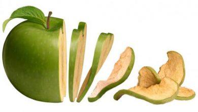 Photo of خشک کن سیب